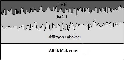 Diffusion and Fe2B and FeB