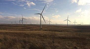 Wind Farm manşet