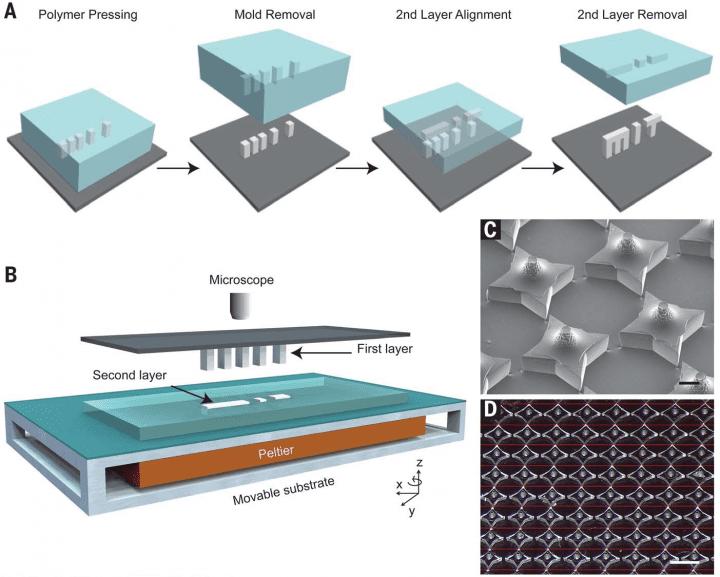 3 Boyutlu mikroyapıların SEAL prosesi kullanılarak montajı